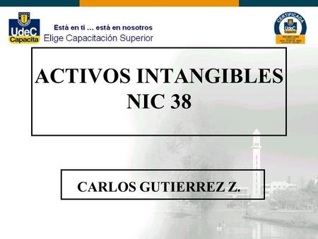ACTIVOS INTANGIBLES NIC 38