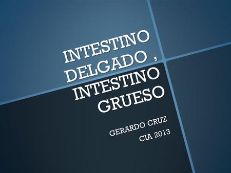 INTESTINO DELGADO, INTESTINO GRUESO GERARDO CRUZ CIA 2013.