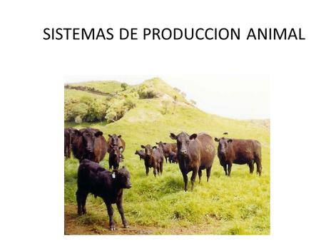 SISTEMAS DE PRODUCCION ANIMAL