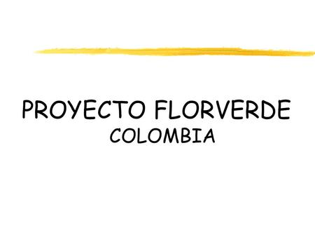 PROYECTO FLORVERDE COLOMBIA