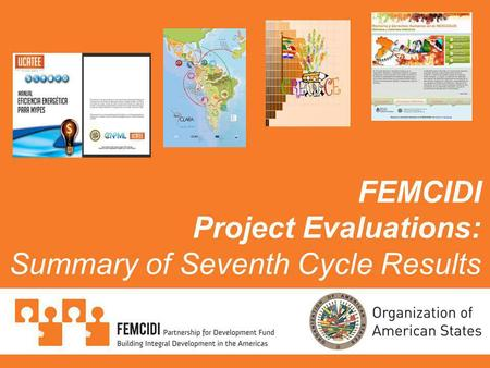 FEMCIDI Project Evaluations: Summary of Seventh Cycle Results.