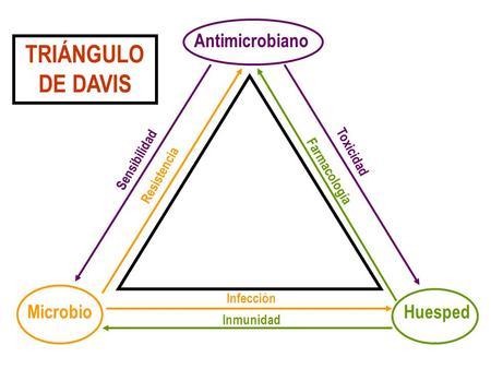Fundamentos del tratamiento antibacteriano ppt descargar for Tratamiento antibacteriano
