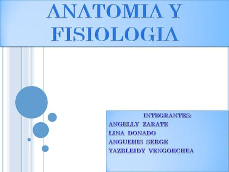 ANATOMIA Y FISIOLOGIA INTEGRANTES: ANGELLY ZARATE LINA DONADO