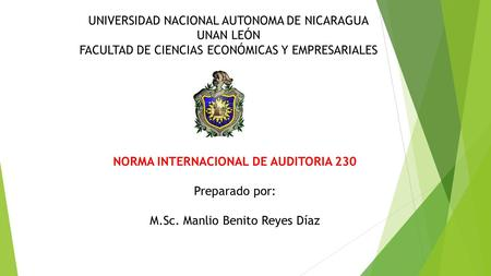 NORMA INTERNACIONAL DE AUDITORIA 230
