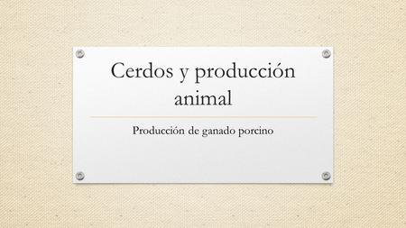 Cerdos y producción animal