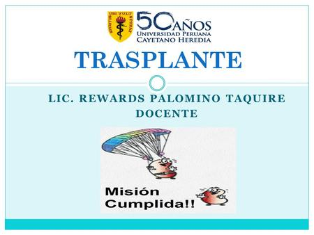 Lic. Rewards palomino taquire DOCENTE