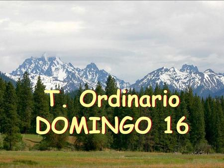 T. Ordinario DOMINGO 16.