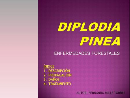 ENFERMEDADES FORESTALES