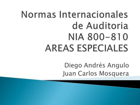Normas Internacionales de Auditoria NIA AREAS ESPECIALES
