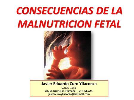 Hip tesis del origen fetal de la enfermedad grace m for Ph piscina bajo consecuencias
