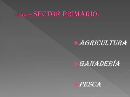 Circuito productivo del tabaco ppt video online descargar for Viveros ornamentales definicion