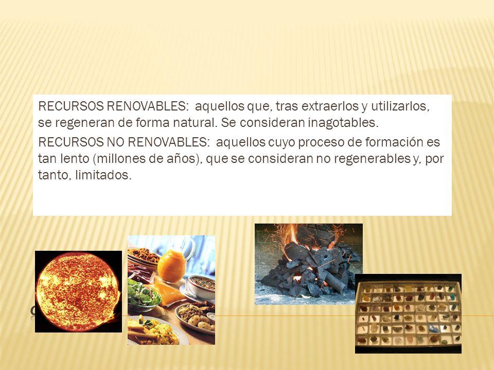 Energéticos Hídricos Minerales Alimentos Forestales Paisajísticos
