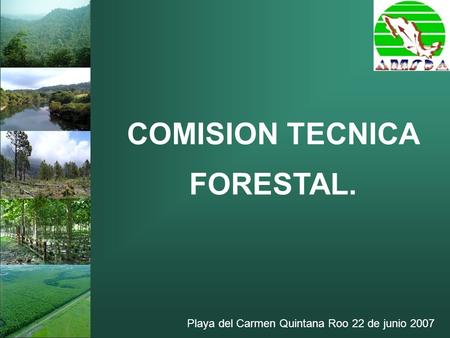 COMISION TECNICA FORESTAL.