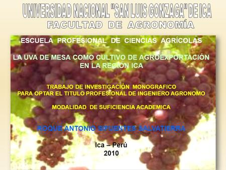 Otros terpenos productos no maderables del bosque ppt for Cultivo de uva de mesa en peru