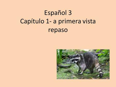 Español 3 Capítulo 1- a primera vista repaso. Objective: Students indentify vocabulary Chapter 1 terms represented by images.