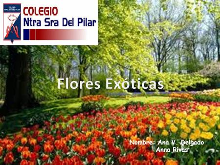 La rosa tipo de planta arbusto espinoso ppt video for Plantas exoticas online