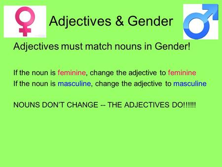 Adjectives & Gender Adjectives must match nouns in Gender! If the noun is feminine, change the adjective to feminine If the noun is masculine, change the.