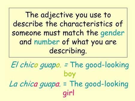 The adjective you use to describe the characteristics of someone must match the gender and number of what you are describing. El chico guapo. = The good-looking.