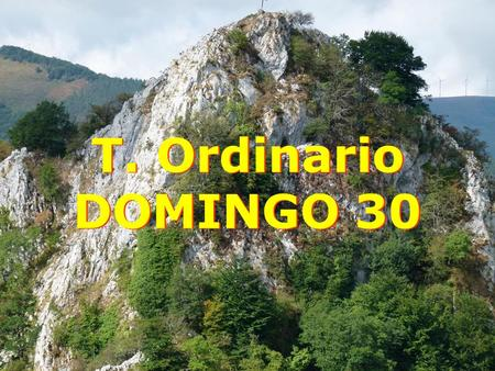 T. Ordinario DOMINGO 30.