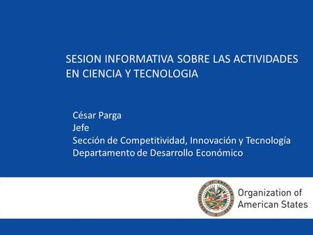 Competitiveness, Innovation and Technology Section Department of Economic and Social Development SESION INFORMATIVA SOBRE LAS ACTIVIDADES EN CIENCIA Y.