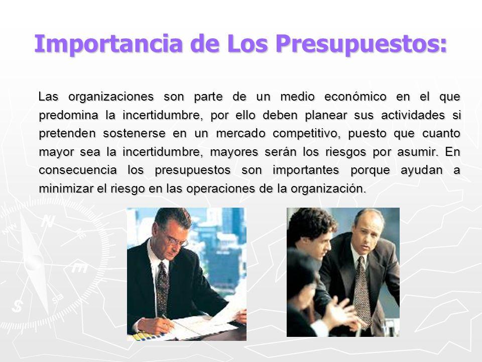 Importancia de Los Presupuestos: Por medio de los presupuestos se mantiene el plan de operaciones de la empresa en límites razonables.