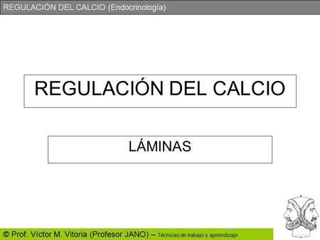 REGULACIÓN DEL CALCIO LÁMINAS.