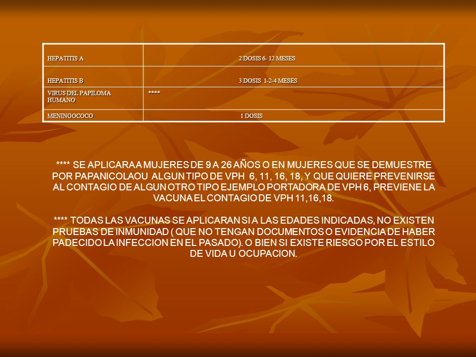 EL DIA DE SU EXAMEN ES MUY IMPORTANTE QUE: 1.- SE PRESENTE A LA HORA CITADA.
