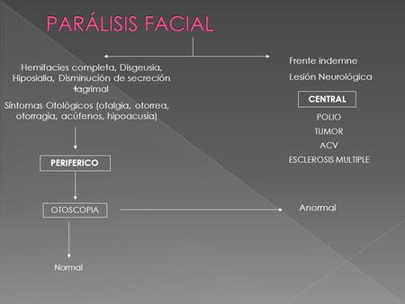 PARÁLISIS FACIAL Frente indemne