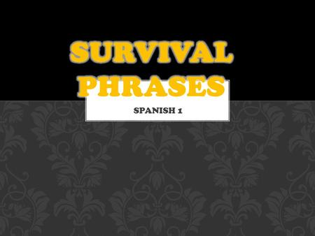 SPANISH 1 NECESITO UN LAPIZ. SURVIVAL PHRASES NECESITO UN BOLIGRAFO. SURVIVAL PHRASES.
