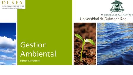Gestion Ambiental Derecho Ambiental Universidad de Quintana Roo.