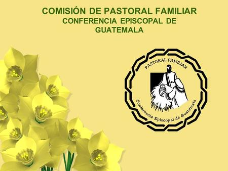 COMISIÓN DE PASTORAL FAMILIAR CONFERENCIA EPISCOPAL DE GUATEMALA.