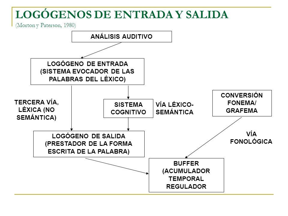 EL BUFFER GRAFÉMICO (Ellis, 1982) SISTEMAS SUBYACENTES VÍA LÉXICAVÍA FONOLÓGICA BUFFER GRAFÉMICO (ALMACENAMIENTO A CORTO PLAZO.