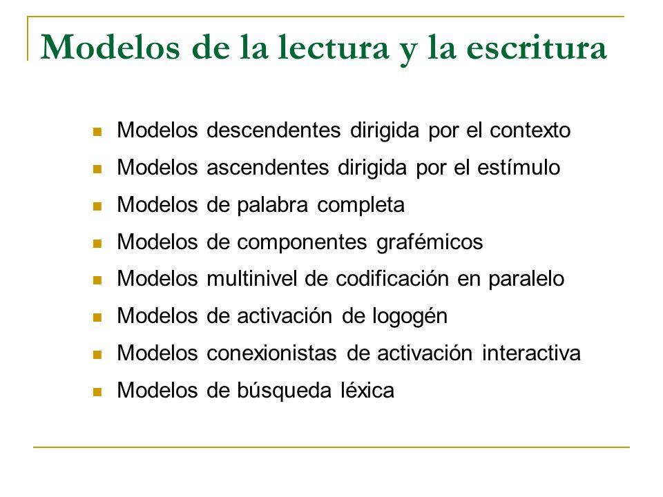 Elementos constitutivos de la lectura Codificación fonológica Codificación morfológica Codificación sintáctica Codificación semántica