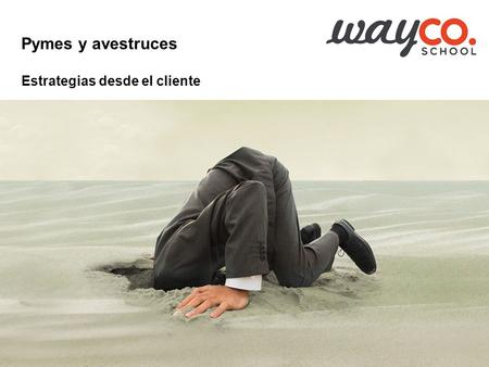 Pedro Muro Consultor artesano Business Strategies &  #waycoschool Pymes y avestruces Estrategias.