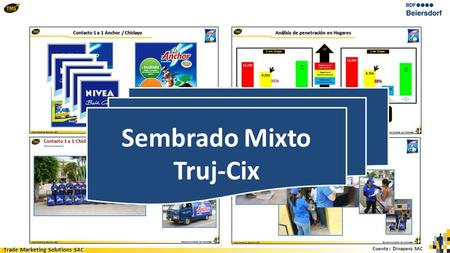 Cuenta : Dinaperú SAC Trade Marketing Solutions SAC Sembrado Mixto Truj-Cix.