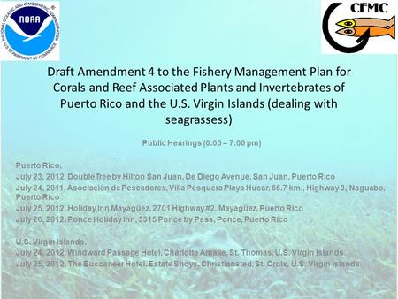 Draft Amendment 4 to the Fishery Management Plan for Corals and Reef Associated Plants and Invertebrates of Puerto Rico and the U.S. Virgin Islands (dealing.