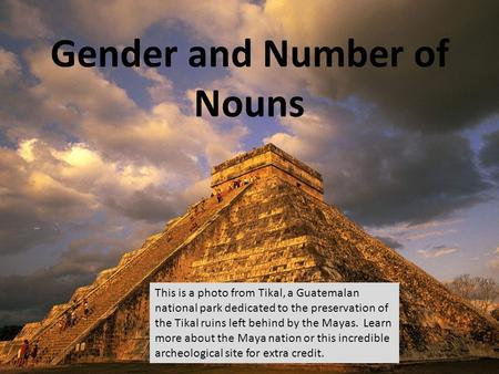 Gender and Number of Nouns This is a photo from Tikal, a Guatemalan national park dedicated to the preservation of the Tikal ruins left behind by the Mayas.