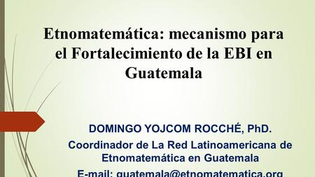 DOMINGO YOJCOM ROCCHÉ, PhD.