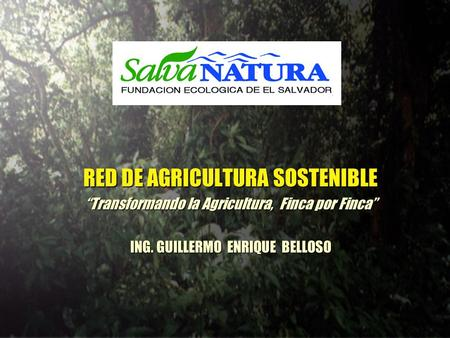 RED DE AGRICULTURA SOSTENIBLE