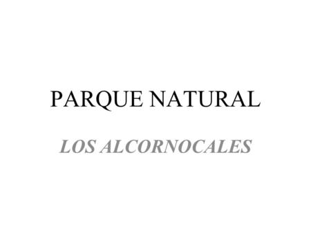 PARQUE NATURAL LOS ALCORNOCALES. Click to edit the outline text format – Second Outline Level Third Outline Level – Fourth Outline Level Fifth Outline.