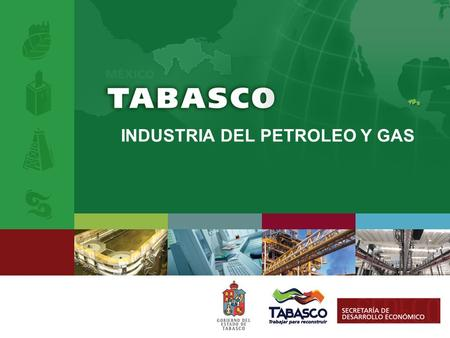 INDUSTRIA DEL PETROLEO Y GAS