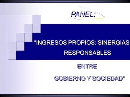 "PANEL: ""INGRESOS PROPIOS: SINERGIAS RESPONSABLES ENTRE"