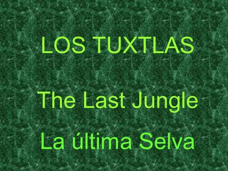 LOS TUXTLAS The Last Jungle La última Selva Fertile beyond belief, in ancient times this land was known as Tlalocan, land of abundance and earthly paradise.
