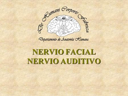 NERVIO FACIAL NERVIO AUDITIVO