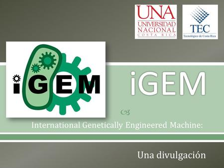 International Genetically Engineered Machine: