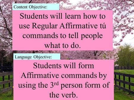 Students will learn how to use Regular Affirmative tú commands to tell people what to do. Content Objective: Language Objective: Students will form Affirmative.
