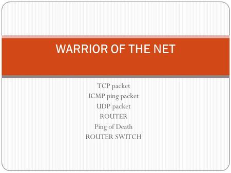 TCP packet ICMP ping packet UDP packet ROUTER Ping of Death ROUTER SWITCH WARRIOR OF THE NET.