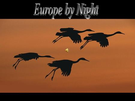 Europe by Night.