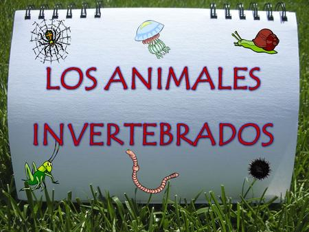 LOS ANIMALES INVERTEBRADOS.