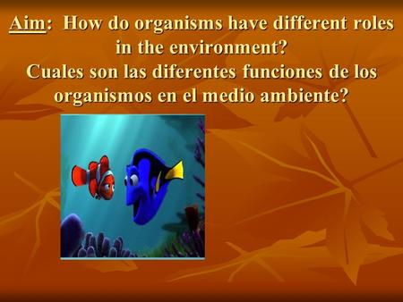 Aim: How do organisms have different roles in the environment? Cuales son las diferentes funciones de los organismos en el medio ambiente?